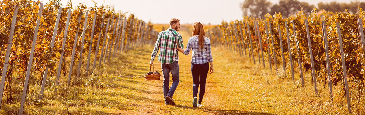 Couple on an affordable honeymoon in Sonoma, California