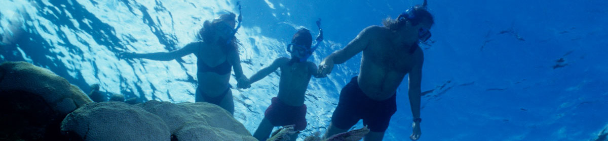 Snorkelers covered by Generali travel insurance