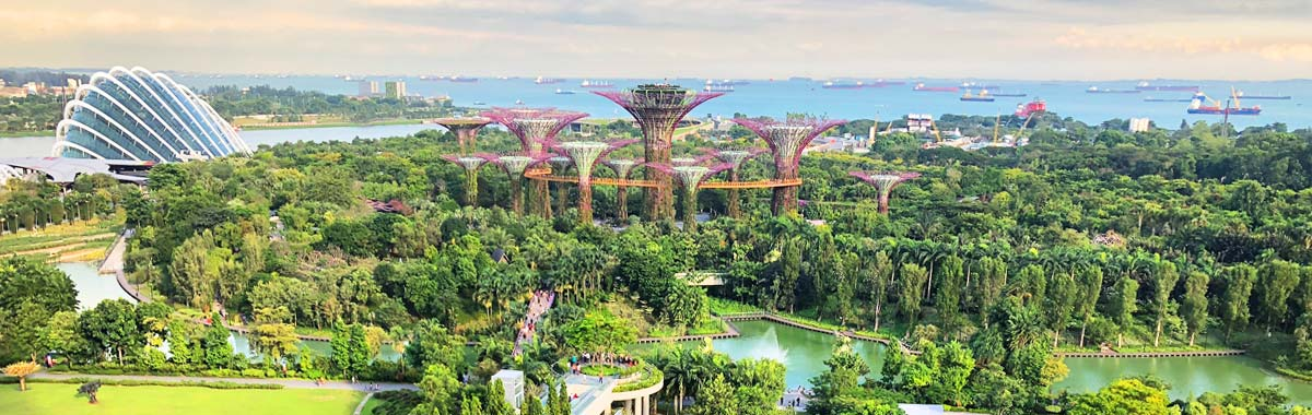 Garden by the Bay in Singapore, a top asian travel destination